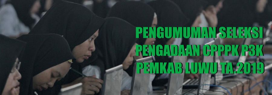 Pengumuman Seleksi Pengadaan CPPPK P3K PEMKAB Luwu TA.2019